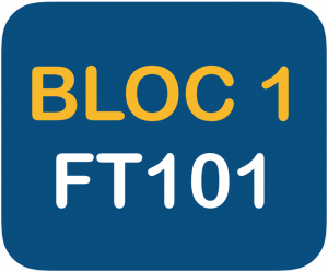 Bloc 1 FT101 reduce Fortunate Trader Make It Happen Trading Stock Market LIVE Webinars Experience to get you the best knowledge