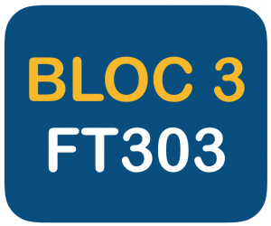 Bloc 3 FT303 reduce Fortunate Trader Make It Happen Trading Stock Market LIVE Webinars Experience to get you the best knowledge